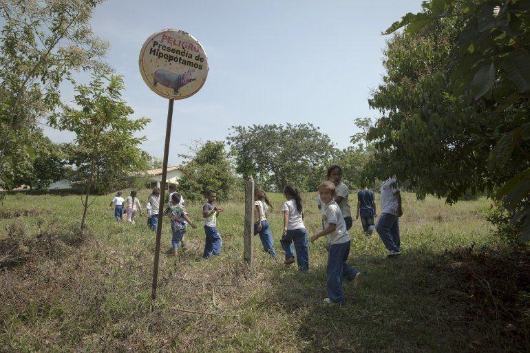 Un grupo de niños pasa junto a un cartel que advierte sobre la presencia de hipopótamos camino a la escuela en Puerto Triunfo, Colombia, el 12 de febrero del 2020.