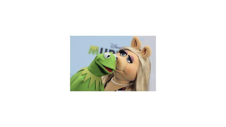 Peggy rompe con la rana René en medio de la promoción de