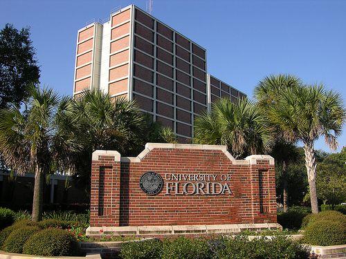 Resultado de imagen para university of florida gainesville