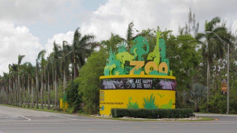 Zoológico de Miami reabre sus puertas tras recuperarse del huracán ...