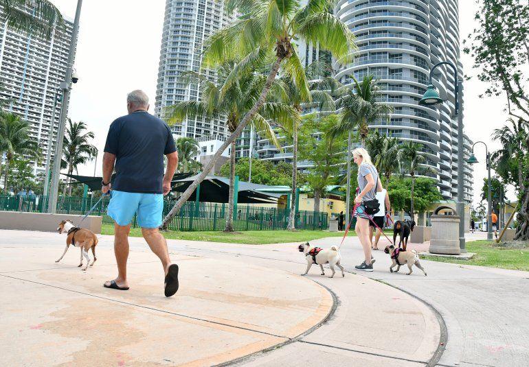 El downtown de Miami continúa creciendo, cobra nueva vida y se ...