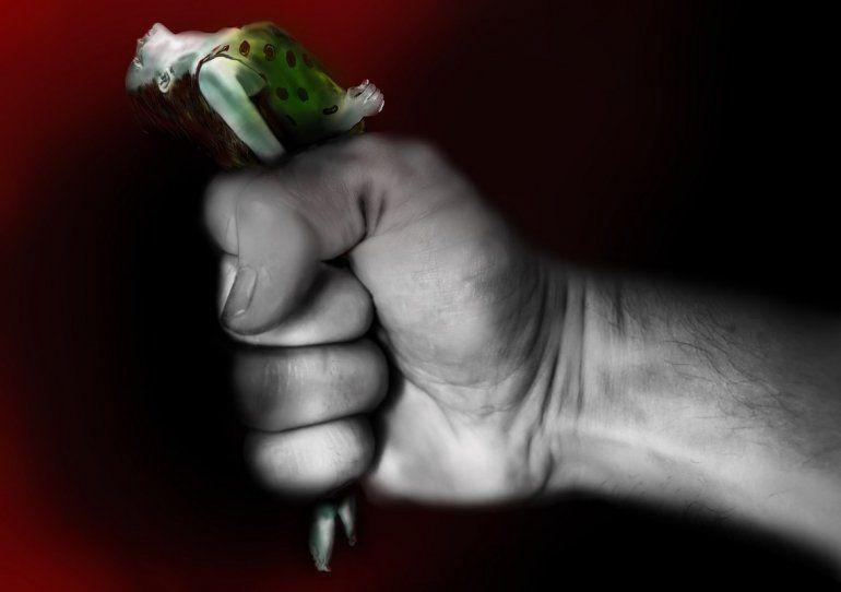 Conozca La Diferencia Entre Agresividad Y Violencia Bienestar