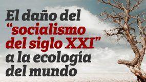 Una crisis ecológica que afecta al planeta