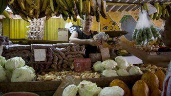 Una mujercuenta dinero luego de vender unas verduras a un cliente en su puesto en La Habana, Cuba, el miércoles 30 de julio de 2019.