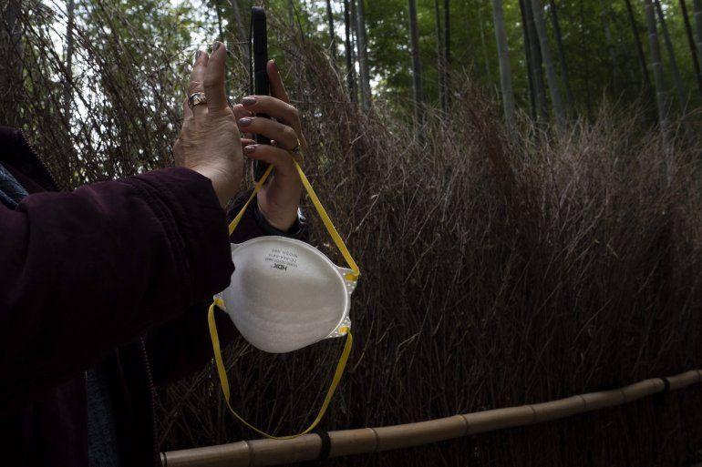 Una turista sostiene una mascarilla mientras hace fotos en el bosque de bambú de Arashiyama en Kioto