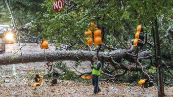 Un árbol de gran tamaño caído sobre West Wesley Road y Habersham Road, que estuvo cortada al tránsito, tras el paso de la tormenta tropical Zeta, el 29 de octubre de 2020, en Atlanta, Georgia.