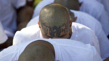 En esta foto de archivo del 31 de enero de 2019, hombres encarcelados identificados por las autoridades como miembros de la Mara Salvatrucha (MS) están sentados esposados mientras son transferidos a la prisión de alta seguridad de Zacatraz en Zacatecoluca, El Salvador.