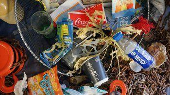 Los objetos que los animales ingieren con mayor frecuencia son los hilos de pesca, los envases de alimentos, las bolsas de plástico, los globos y las lonas.