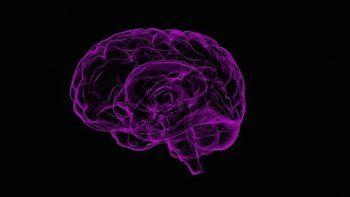 En este momento, no existe cura para el Alzheimer, pero hay tratamientos disponibles para los síntomas, mientras los estudios investigativos continúan.