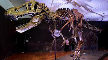 Los restos fósiles de un Tyrannosaurus rex que se encuentra entre los más completos del mundo fueron subastados por 31,8millonesde dólares en Nueva York.