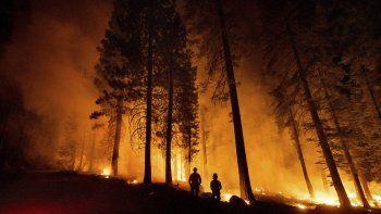 Unos miembros del Departamento Forestal y de Protección contra Incendios de California supervisan un operativo contra incendios, mientras las llamas arrasan con el bosque nacional de Lassen, el lunes 26 de julio de 2021.