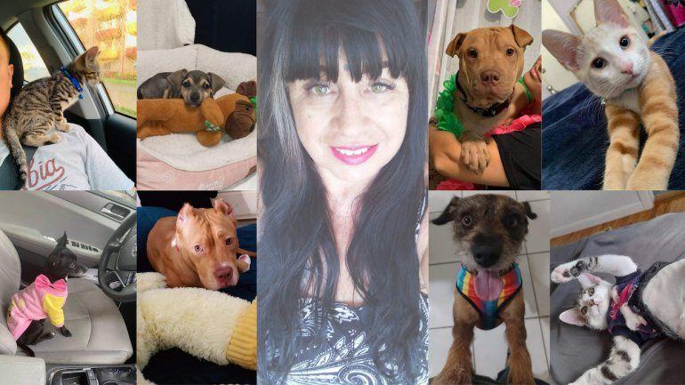 La rescatista Stella Di Pietro se enfoca en proteger a gatos y perros callejeros en Miami para que sean tratados por veterinarios y encuentren hogares permanentes.
