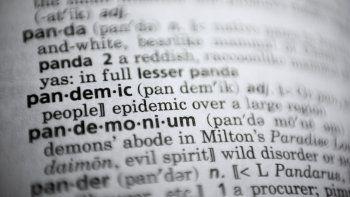 En esta foto del sábado 21 de noviembre de 2020, la palabra pandemic (pandemia) en un diccionario en Washington. El Merriam-Webster y dictionary.com declararon pandemia como la palabra del año.