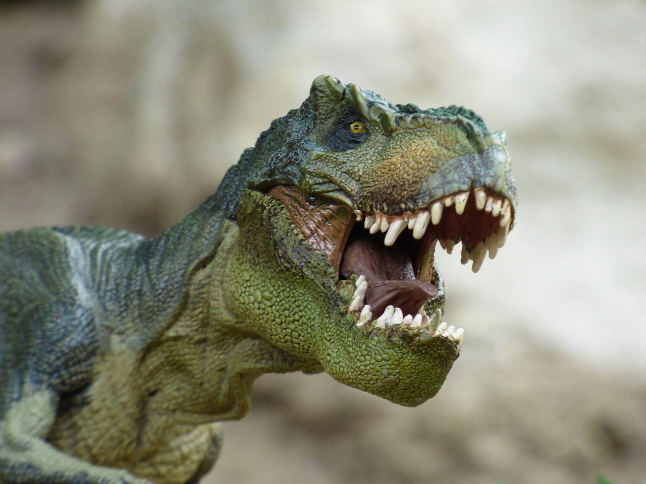 Los dinosaurios primitivos ya vivían en manada