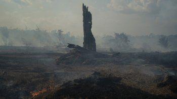 Una llama brota de un tronco entre el humo junto a un camino al Bosque Nacional Jacunda, cerca de la ciudad de Porto Velho y que forma parte de la Amazonía brasileña, el lunes 26 de agosto de 2019