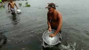 Personas con diversos objetos, como cubos o parrillas de ventiladores, atrapando peces en medio de la escasez de alimentos que se vive a lo largo y ancho de Cuba