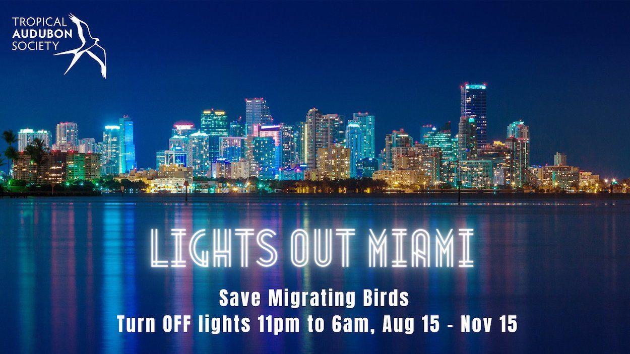 La campaña Lights Out Miami, promovida por Tropical Audubon Society, alienta a residentes en Miami a evitar la muerte de aves apagando la iluminación innecesaria, especialmente en los pisos superiores, entre la medianoche y el amanecer.