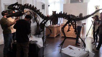 Los esqueletos, originales de la era Jurásica (entre 148 y 154 millones de años atrás), han sido reconstituidos por paleontólogos estadounidenses.