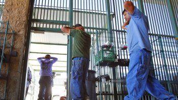 En esta fotografía del 9 de agosto de 2012 unos inmigrantes son transferidos fuera de un centro de detención en el sector de Tucson Oficina de Aduanas y Protección Fronteriza de Estados Unidos en Tucson, Arizona.