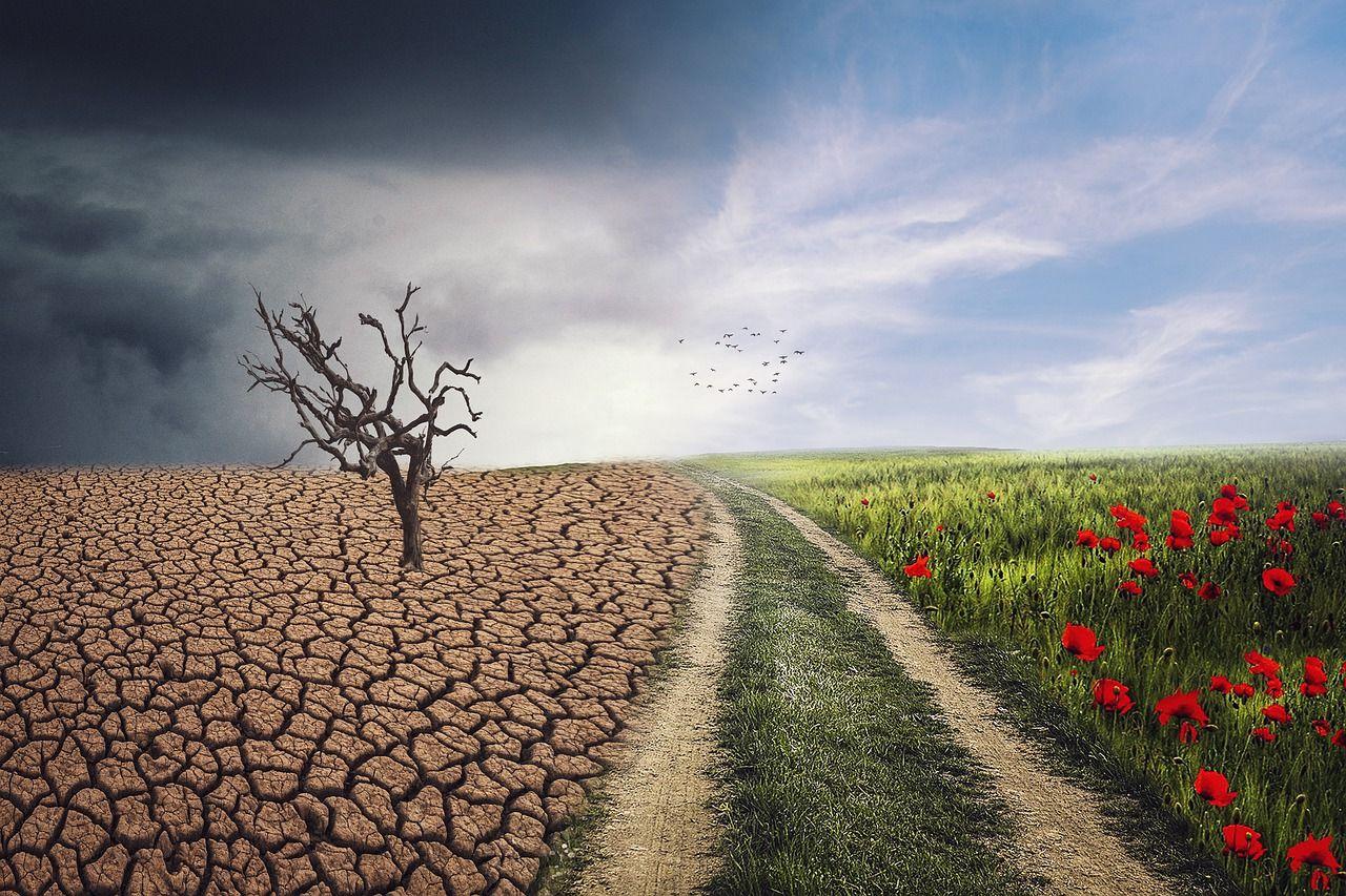 216 millones de personas pueden migrar por cambio climático