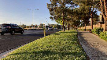 Tramo verde junto a la carretera Green Valley Parkway en foto del 9 de abril del 2021 en Henderson, un suburbio de Las Vegas. Las autoridades analizan una propuesta de eliminar el césped decorativo de espacios como este para ahorrar agua.
